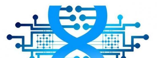 基于DNA的芯片可以编程来解决复杂的数学问题