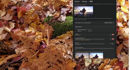 如何在Windows 11中启用HDR